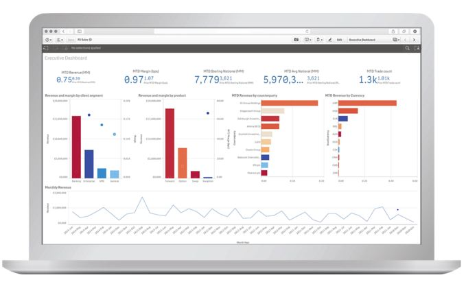 Qlik for Financial Services   BI Analytics  Differentia Consulting